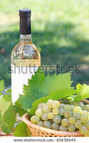 A bottle of white wine with grapes in basket and leaves . Outdoor. Summer day.