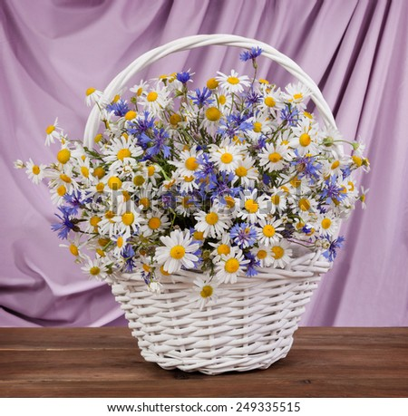 A bouquet of chamomiles on the table. spring still life - stock photo