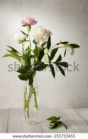 A  bouquet of  pale peonies on old wooden table. - stock photo