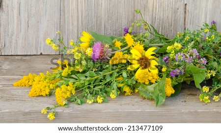 A bouquet of prairie wildflowers laying on a weathered backdrop - stock photo