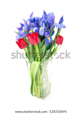 a bouquet of purple colored irises and red colored tulips in a clear glass vase isolated on a white background - stock photo