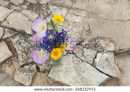 A bouquet of Texas wildflowers from the Texas Hill Country in a mason jar shot from overhead on stone ground. Evening primroses, bluebonnets and yellow daisies. - stock photo