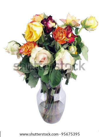 a bouquet of wilted roses in a clear glass vase - stock photo