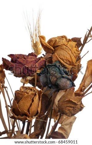 A bouquet of withered roses and flowers on white background - stock photo