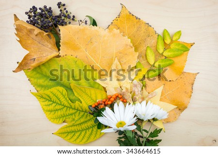 A bouquet of yellow, green autumn leaves, flowers, berries and seeds. - stock photo