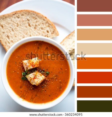 A bowl of fresh tomato soup, garnished with oil, herbs and croutons, and served with wholemeal bread. In a colour palette with complimentary colour swatches. - stock photo
