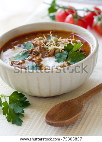 A bowl of homemade chili lentil soup with meat - stock photo