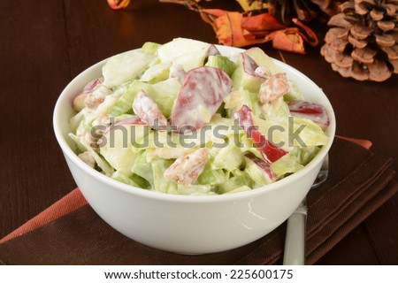 A bowl of Waldorf salad with chicken, apples and walnuts - stock photo