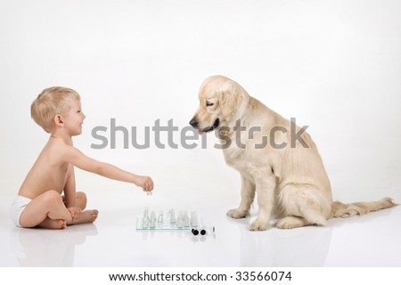 A boy playing chess with golden retriever - stock photo