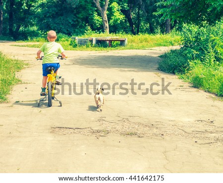 a boy rides his Bicycle along the path in the Park, running alongside the pug, rear view. Boy on bike with dog around a lot of greenery - stock photo