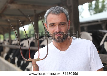 a breeder with cows - stock photo