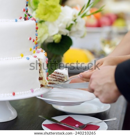A bride and a groom are cutting their wedding cake - stock photo