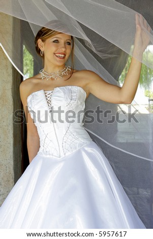 A bride standing behind net in her dress - stock photo