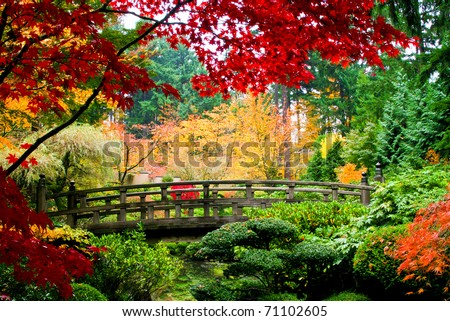 A bridge in a Japanese garden during Fall season