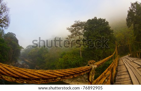 A bridge over a forest at dawn - stock photo