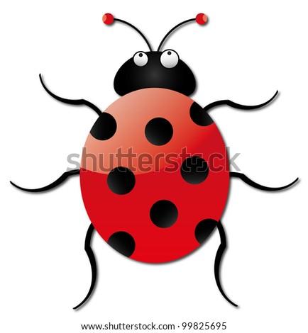 A bright ladybug on a white background - stock photo