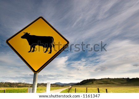A bright yellow cow sign along a beautiful country road.