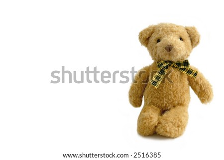 A brown teddy bear, isolated on white - stock photo