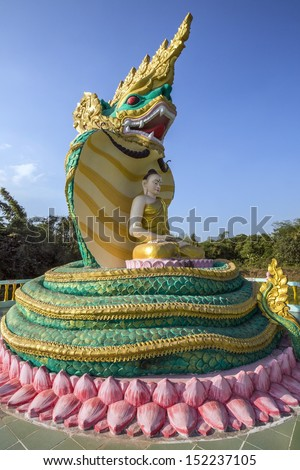 A Buddha Image protected by a Naga (mythical serpent-like creature) near the Shwe Tha Lyaung Reclining Buddha in the town of Bago near Yangon in Myanmar. - stock photo