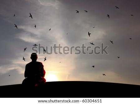 A buddhist monk in harmony as swallows swirling as he meditates. - stock photo