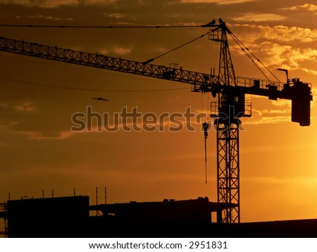A building site at sunset with bird flying nearby
