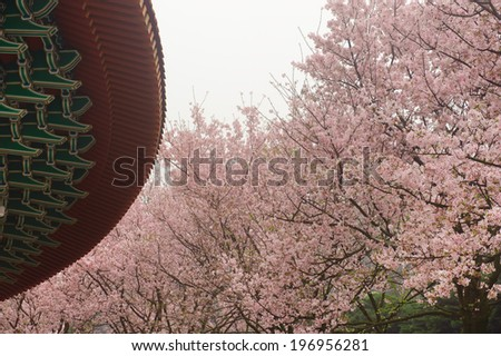 A building surrounded by trees with pink blossoms. - stock photo
