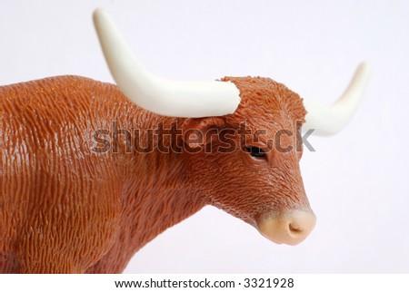 A bull head and horns - stock photo