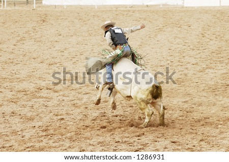 A bull rider hangs on for 8 seconds to receive a score at a rodeo. - stock photo