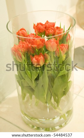 A bunch of beautiful fresh red tulips in a vase isolated on light background - stock photo