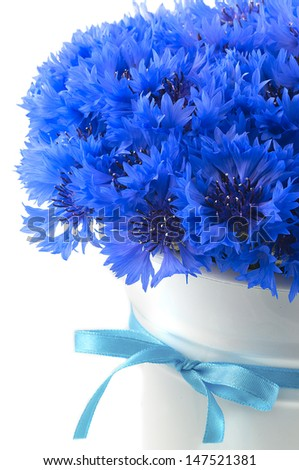 A bunch of beautiful summer flower of Cornflower in the white bucket with blue ribbon isolated. Concept of romantic. - stock photo