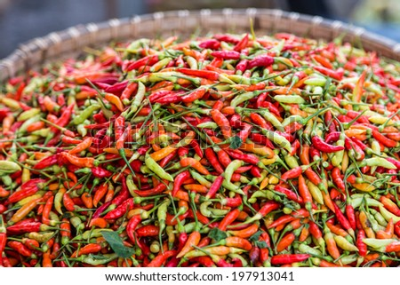 A bunch of fresh chilli displayed in a market in Kota Kinabalu, Sabah, Malaysia - stock photo