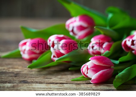A bunch of fresh pink tulips flowers on a rustic wooden background - stock photo