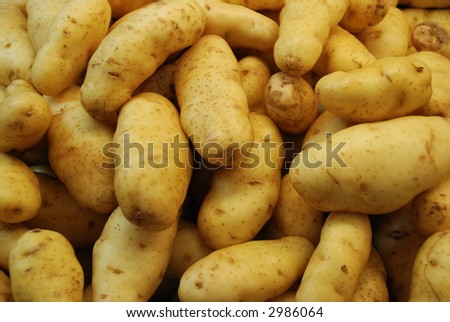 A bunch of fresh uncooked potatoes in a bin - stock photo