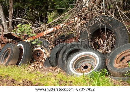 A Bunch of Old Tires Dumped Amongst Some Trees and Vines - stock photo