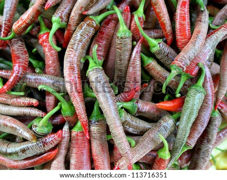 A bunch of red hot chili pepper - stock photo