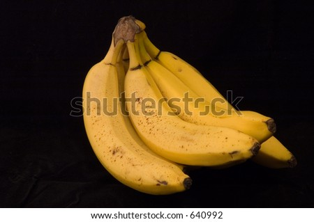 A bunch of ripe yellow bananas on a black background.