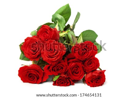 A bunch of scarlet roses over white background