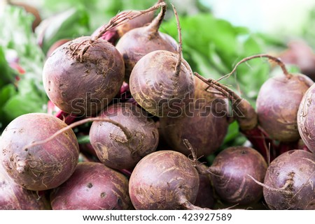 A bundle of Beta vulgaris, known as beetroot.beet on the market in Greece - stock photo