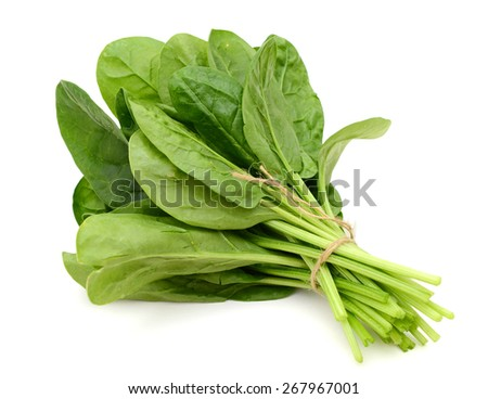 a bundle of spinach on white background  - stock photo