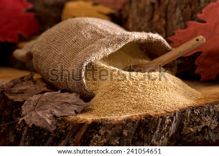 A burlap bag of delicious natural maple sugar in a maple forest setting. - stock photo