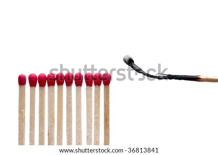 A burnt match near other matches on white - stock photo