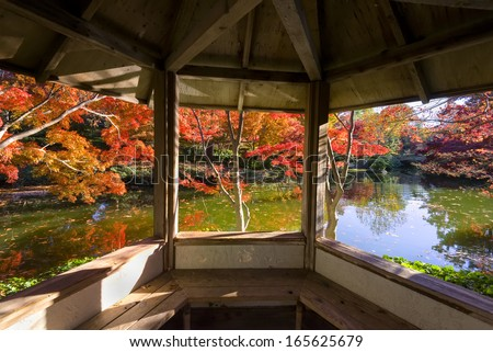 A burst of fall color with pond reflections, as viewed from a gazebo - stock photo