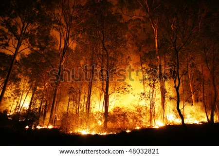 A bushfire burning orange and red at night.