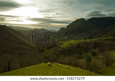 A cabin surrounded by trees and fog in the mountain/Cabin in the woods/Redes Natural Park in Asturias, Spain. - stock photo