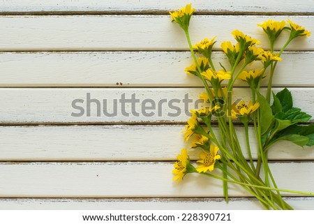 a calendula bloom and petals on the floor - stock photo