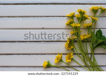 a calendula bloom and petals on the wooden floor - stock photo