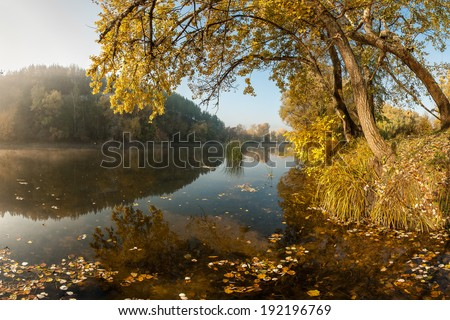 A calm river with autumn leaves in the water and a beautiful reflection - stock photo