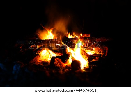 a campfire in the forest