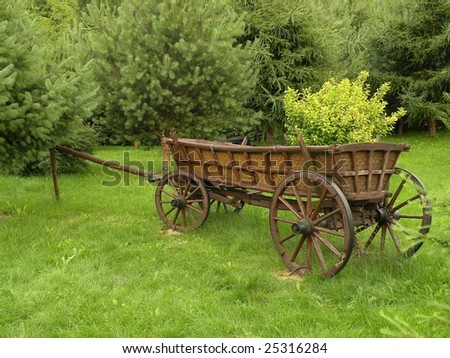 A carriage on the garden - stock photo