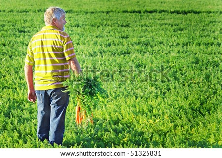 a Carrot farmer with a bunch of carrots in his hand - stock photo
